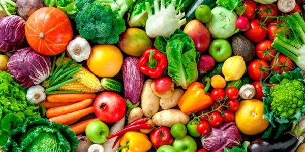 Agricultura convencional y agricultura ecológica